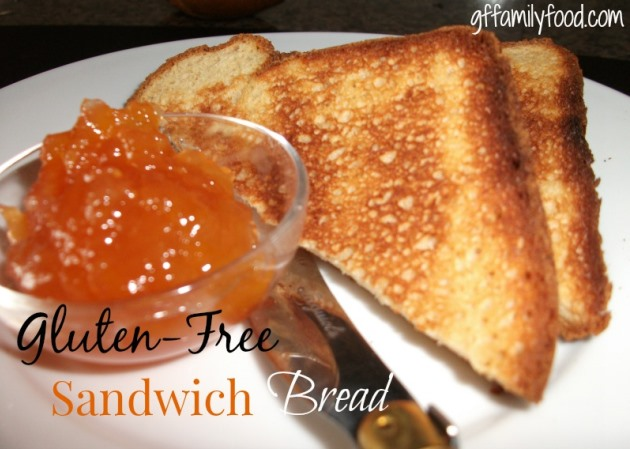 gluten-free sandwich bread recipe by Carlyn Berghoff